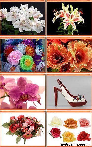 цветы-5